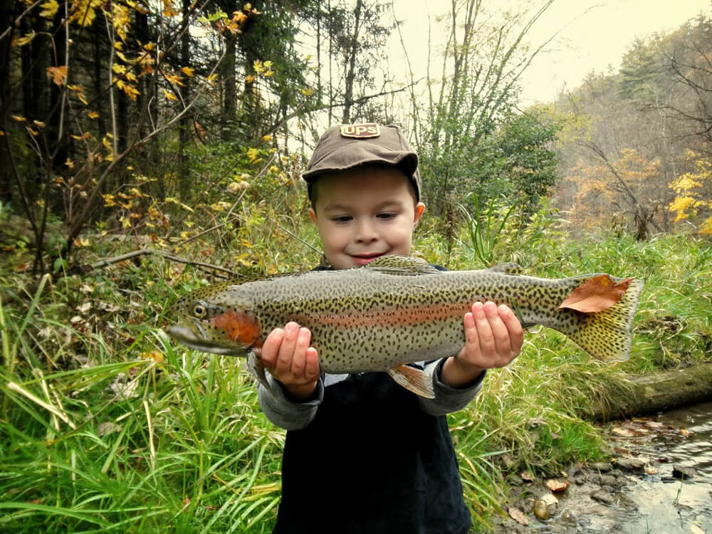 Wild vs stocked the hierarchy of trout in pennsylvania for Best fishing in pa