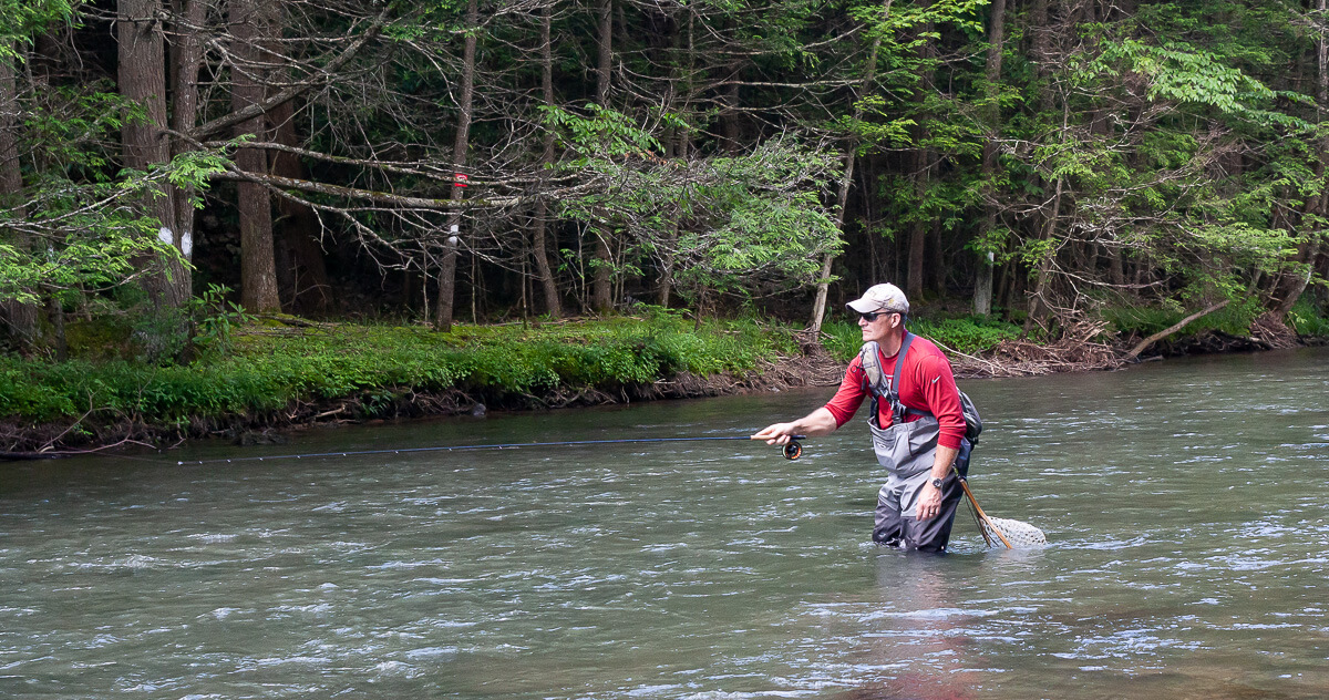 Dry Fly Fishing -- The Stop and Drop | Troutbitten